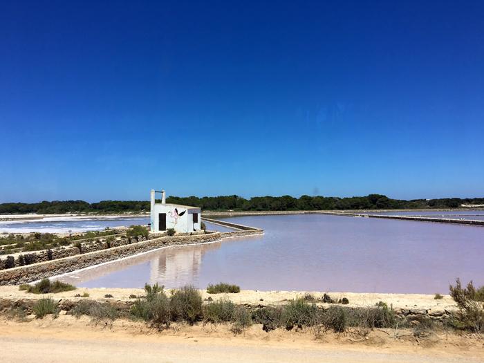 En el camino a Illetes asoman los estanques rosáceos del Parque Natural de Ses Salines. © NC/Ulises Cat